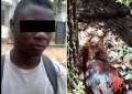 "Ntibisanzwe : Muri Nigeria uno musore yafashwe ahejeje gusambanya inkoko kugeza naho yayisize ipfuye "" wunvise impanvu ya vyose iratangaje"